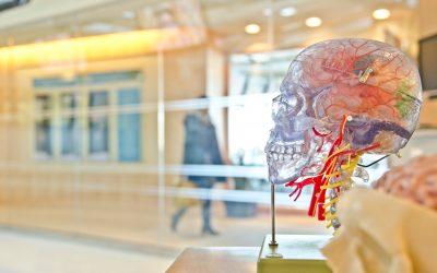 Beyindeki her faaliyet, belli bir enerji üretir